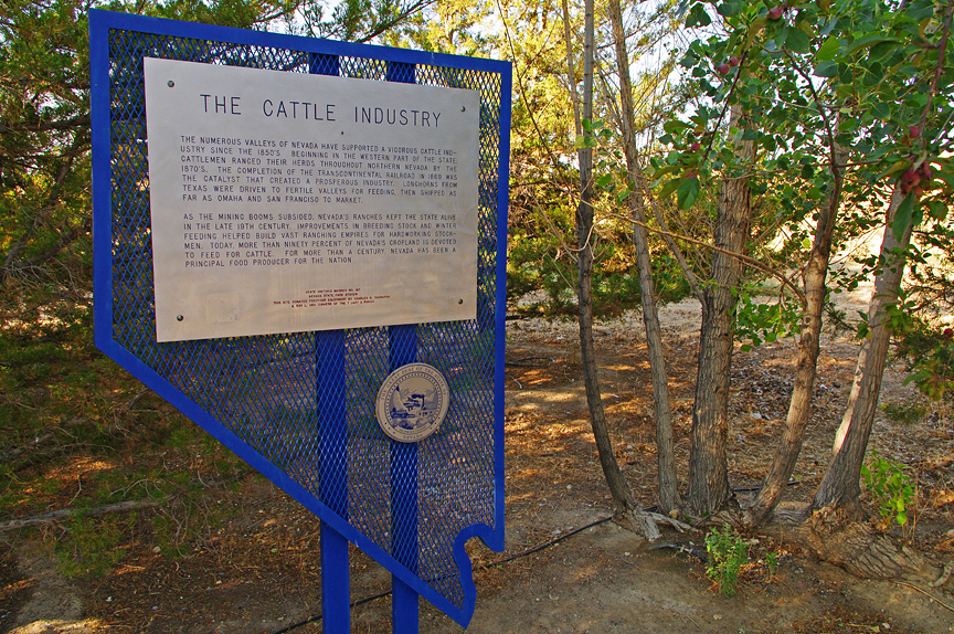 The Cattle Industry